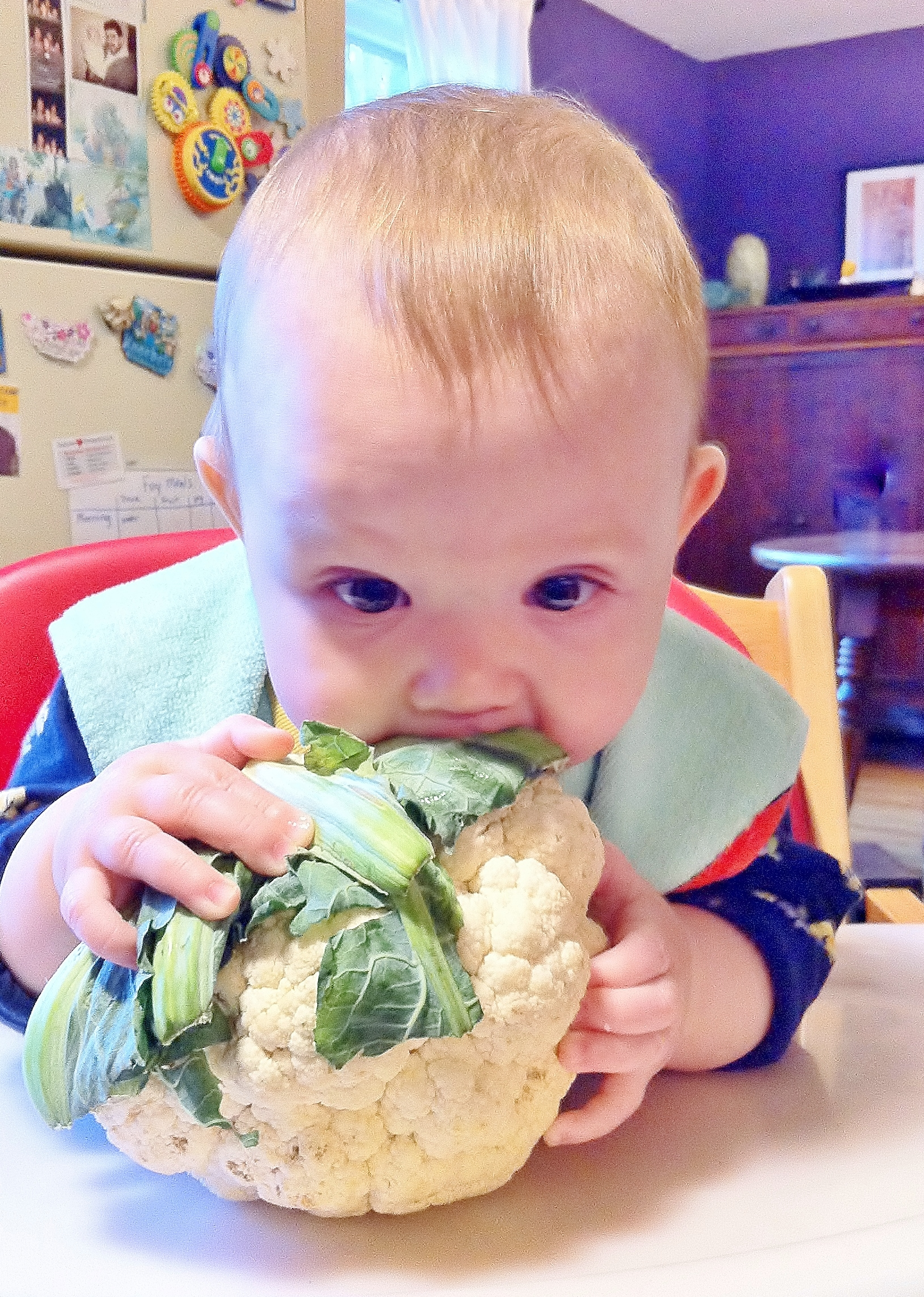 When is the Best Time to Start My Baby on Foods Other Than Breastmilk? |  Breastfeeding USA
